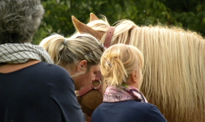 psicologia con il cavallo per donne operate al seno