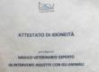 L'idoneità dell'animale in IAA è esclusiva responsabilità del veterinario esperto in IAA