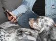 #quieora la Pet-Therapy e l'Equine Therapy a distanza diventa IMMERSIVA